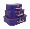 Euro Storage Suitcases - Purple with Pink Handles