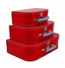 Euro Storage Suitcases - Red with Blue Handles