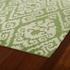 Evolution Ikat Rug in Green