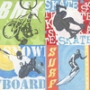 Extreme Sports Canvas Wall Art