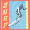 Extreme Sports Surf Canvas Wall Mural