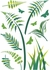Ferns Wall Decals