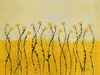 Fields of Gold Canvas Wall Art