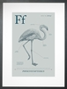 Flamingo in Blue Grey Art Print