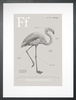 Flamingo in Warm Grey Art Print