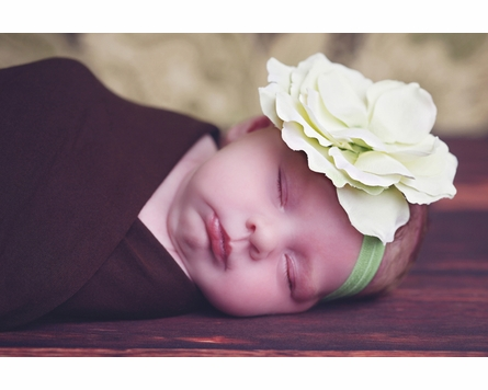 Flowerette Burst Headband in Green Rose