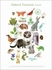 Forest Friends A to Z Canvas Wall Art