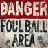 Foul Ball Canvas Wall Art