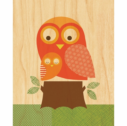 Framed Owl Baby Art Print on Wood