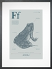 Frog in Blue Grey Art Print