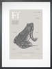 Frog in Warm Grey Art Print
