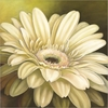 Gerber Flower Art