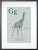 Giraffe in Blue Grey Art Print