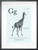 Giraffe in Light Blue Art Print