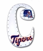 Go Tigers Hand Painted Wall Letters