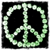 Green Peace Canvas Wall Art