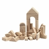 Hardwood Unit Building Block Set