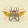 Honeycomb Beetle Canvas Wall Art