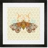 Honeycomb Moth Framed Art Print