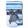 Blue Luxe Stripe Hooded Towel Set