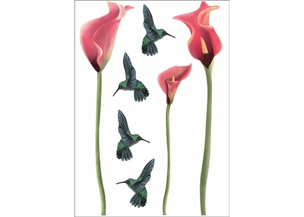 Humming Birds Wall Decals