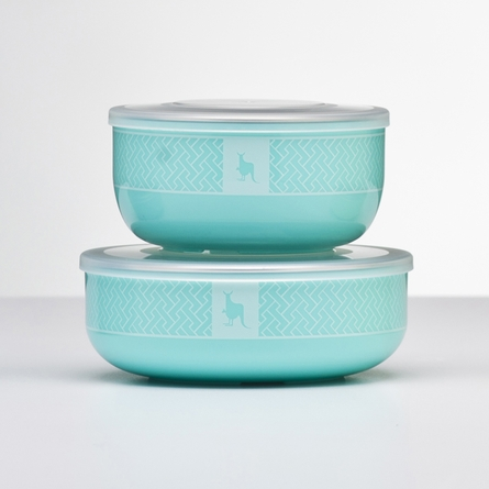 Iced Mint Stainless Steel Dishware Set
