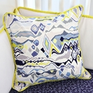 Ikat Citrus Boy Square Throw Pillow