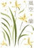 Japanese Orchids Wall Decals