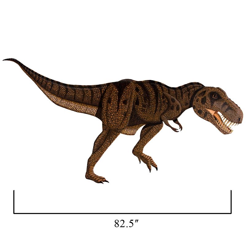 large tyrannosaurus rex wall sticker by instant murals design