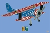 License Plate Airplane Canvas Wall Art