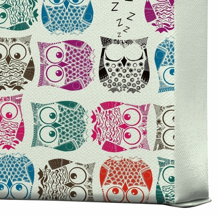 Light Sherbet Owls Wrapped Canvas Art