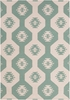 Lima Southwest Flatweave Rug in Mint
