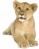 Lion Cub Easy-Stick Wall Art Stickers