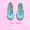 Little Blue Shoes Canvas Wall Art