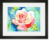 Lovely Rose Framed Art Print