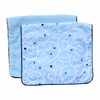 Luxe Light Blue Swirl Burp Cloth Set