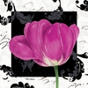 Magenta Tulip II Canvas Wall Art