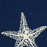 Marine Starfish Indoor/Outdoor Rug