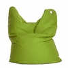 Medium Bull Green Bean Bag Chair