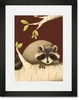 Meeko the Raccoon Brown Framed Art Print