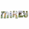 Mikey Pooh Adventures Hand Painted Wall Letters