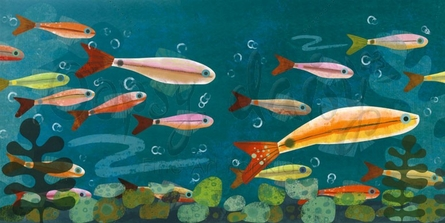 Minnow Pals Canvas Wall Arts