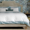 Modern Border Duvet Cover in Mist