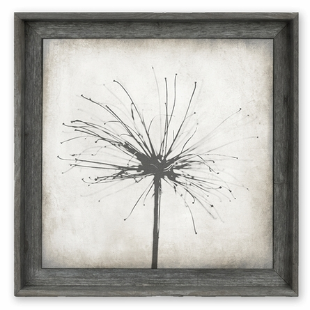 Nature's Firework Framed Canvas Wall Art