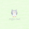 Night Owl Canvas Reproduction