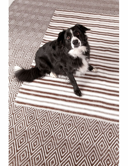 On Sale Diamond Indoor/Outdoor Rug in Brown and White