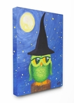 Owl in a Wizard Hat Canvas Wall Art