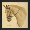 Palomino Horse Framed Wall Art