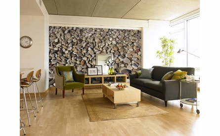 Pebbles Wall Mural