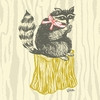 Perched Raccoon Canvas Wall Art